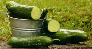 """Mai mult de o treime din fructele și legumele cultivate în Europa nu ajung pe rafturi pentru că sunt """"prea urâte"""""""