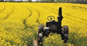Christopher Walken și Christina Ricci vor juca într-un film despre lupta împotriva OMG