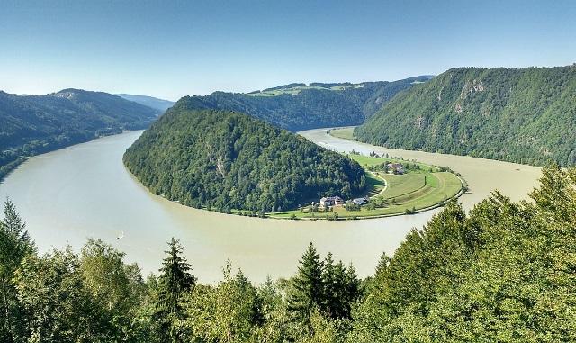 WWF: Zece țări europene își unesc forțele pentru protejarea peștilor migratori din Dunăre
