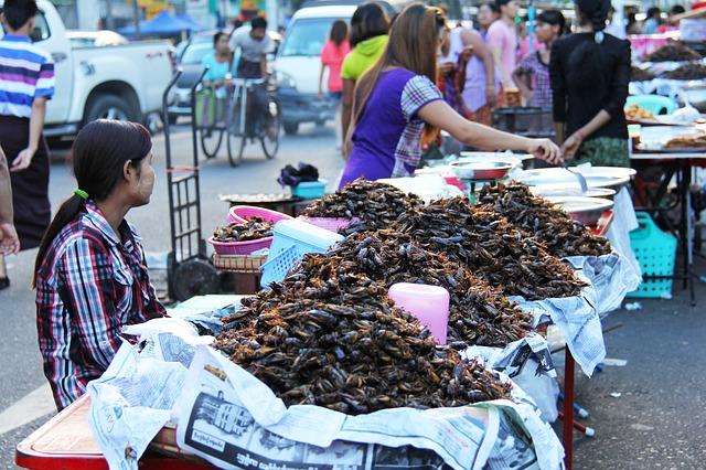 Deoarece gropile de gunoi nu mai fac față cantităților mari de resturi alimentare care sosesc în fiecare zi, chinezii au găsit o soluție ingenioasă. Au înființat fermele de gândaci de bucătărie și hrănesc insectele cu aceste deșeuri. După șase luni, gândacii sunt vânduți ca hrană pentru animale sau ca ingredient pentru anumite medicamente.