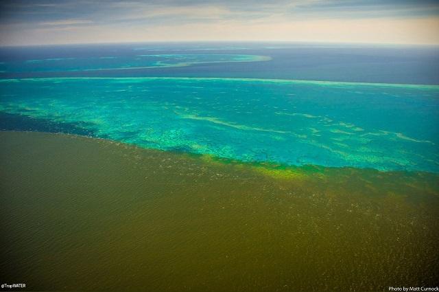 Marea Barieră de Corali  Foto:  Matt Curnock/Tropwater JCU