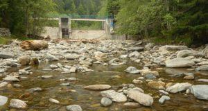 Râul Topolog. Foto: WWF/Dan Dinu